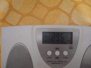 ダイエット前の体脂肪率